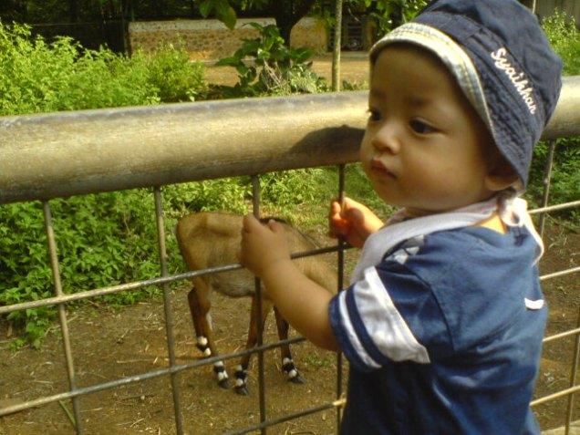 Syaikhan Usia 1 Tahun Saat Berkunjung Kebun Binatang
