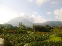 Gunung Lokon dari Gardenia