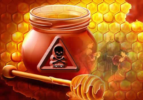 romeo n juliet - madu n racun