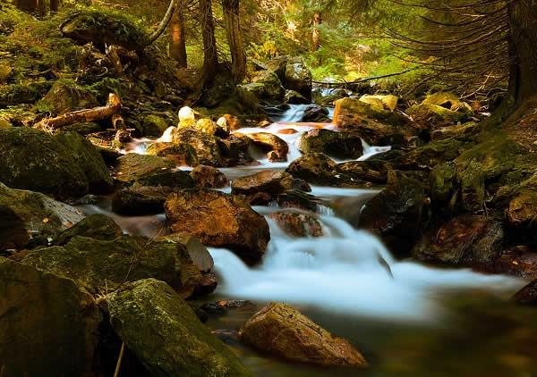 sungai yang mengalir